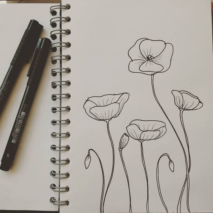 Poppies #artwork #sketch #sketching #sketchoftheday #draw #drawing #dessin #drawingoftheday #dibujo #dibujando #illustration #illustrationgram #illustrationart #handdrawn #becreative #instaart #instaartist #illustrate #illustrated #peoplescreatives #creativityfound #lines #geometry #instasketch #illustrationartists