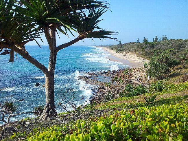 House Sitter Needed  Point Arkwright, Coolum Beach, Coolum Beach   Sunshine Coast,QLD Australia  Jun 30,2015 For 4 weeks