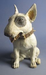 English Bull Terrier ...could this be Him❓ Sparky❓