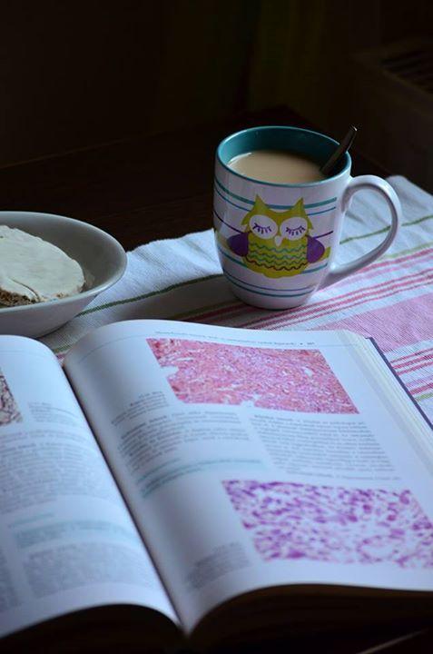 coffee, mornings, study, breakfast http://chocolatefashioncoffee.blogspot.ro/