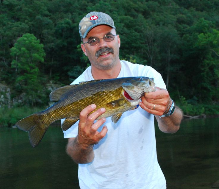 17 best images about smallmouth bass on pinterest canada for Fly fishing for smallmouth bass