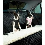 Puppies on the go sitting on their booster car seat!  #ppgdog