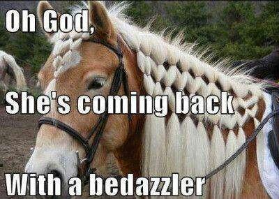 Haha :) I think my horses say that!!
