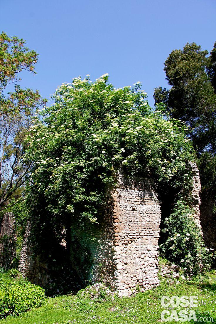 Per raggiungere il giardino di Ninfa da Roma ci si dirige verso sud fino a Doganella di Ninfa (sulla via provinciale Ninfina a Cisterna di Latina, provincia di Latina). Si supera l'ingresso del Parco Naturale Pantanello e si prosegue per un altro chilometro dove c'è il parcheggio e l'ingresso del Giardino di Ninfa