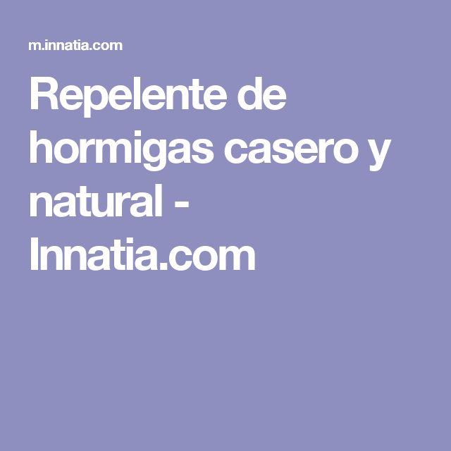 Repelente de hormigas casero y natural - Innatia.com