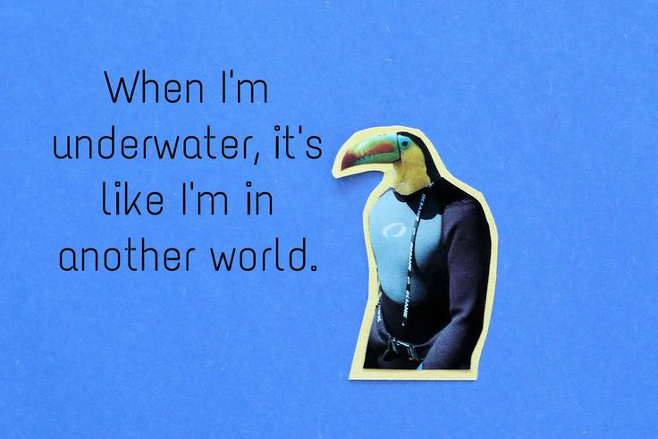 Toucan loves to scuba dive because he can see a different world.