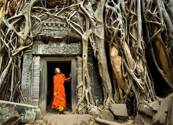 Ta Prohm Temple, Cambodia - The 13 Best Places in the World to Take Photographs via @mydomaine
