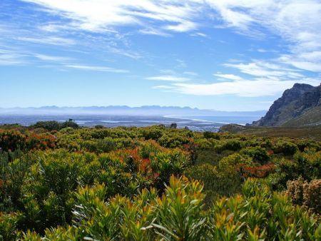 Silvermine Nature Reserve