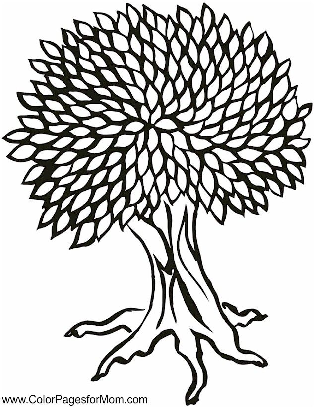 Tree Coloring Page 25 - (colorpagesformom)