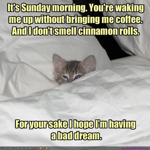 Funny Sunday Morning Coffee | It's Sunday morning. You're waking me up without bringing me coffee ...
