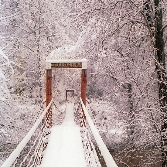1000+ images about Snowfall! on Pinterest | Snow falls, Winter scenes ...