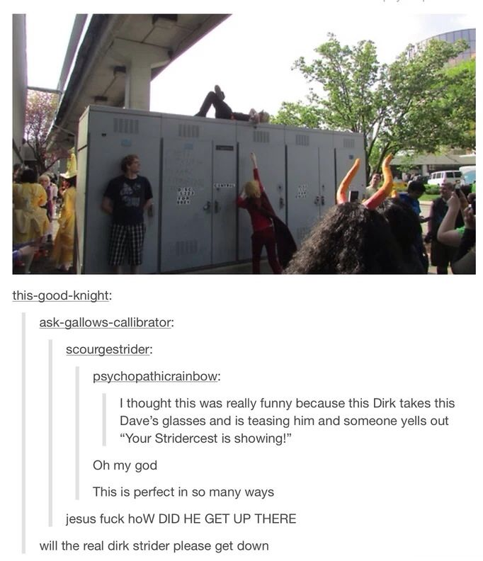 Will the real Dirk Strider please get down . Don't ship stridercest but this is funny