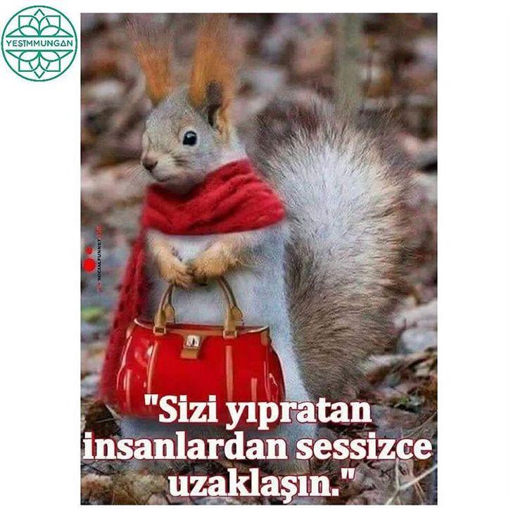 """""""Mutlu bir haftasonu olsun, Günaydın #yesimmungan #studiojade #jademetot #weekend #weekendmorning #pilates #pilatestherapy #hamilepilatesi #rehabpilates…"""""""
