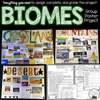 Best 25 Biomes Ideas On Pinterest Trophic Level