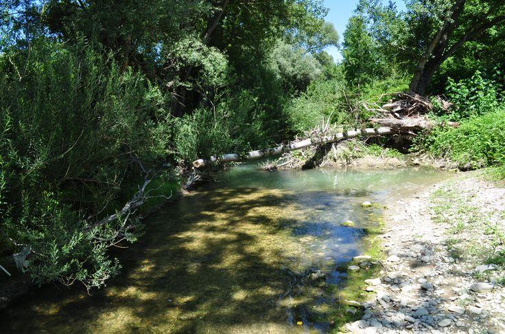 Urlaub Italien. Verwunschener Fluss vom Casa Valrea Ferienhaus. www.casavalrea.de  Wir sind ins Paradis gezogen und lassen auch Feriengäste darin wohnen. Falls ihr Lust habt auf Landleben in schönen Ferienwohnungen in Italien, dann kommt uns besuchen.