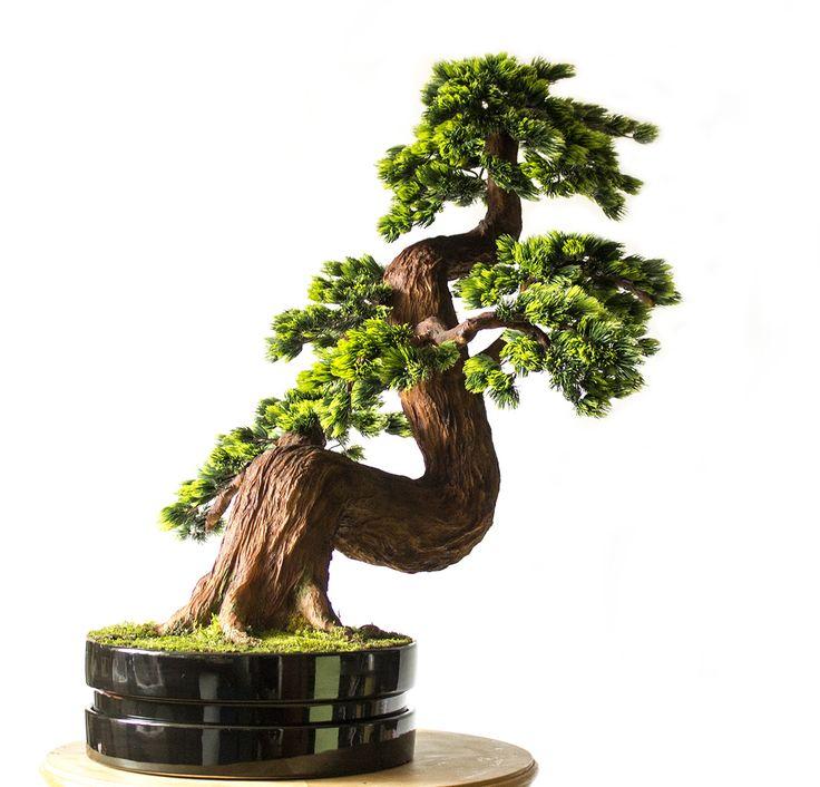 Bonsai zokei - height 93cm.