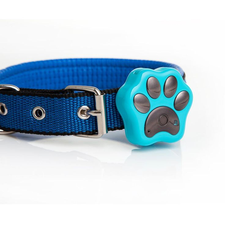 Pet GPS Tracker - Waterproof – CutiePaw Collection