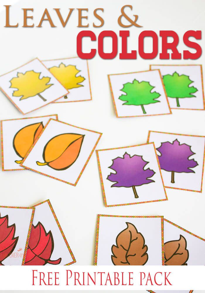 Free Fall Colors Printable Actvities for Preschoolers