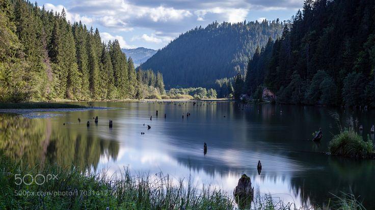 Lacul Rosu by GregoryRinaldi. @go4fotos