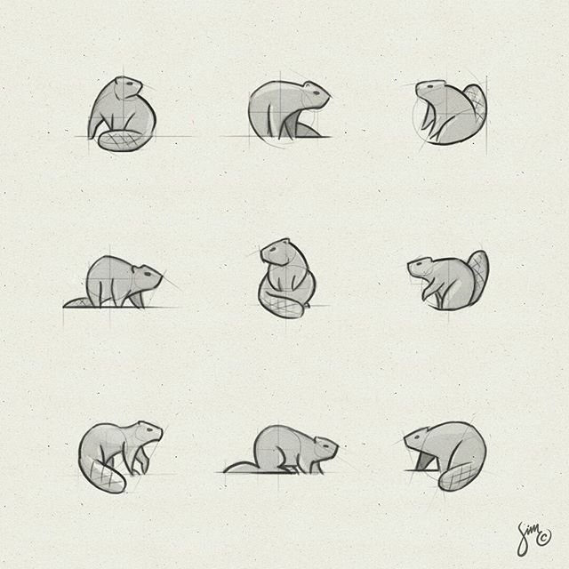 Beaver. A little design exploration. Got a favorite? Happy to hear your thoughts! _ #beaver #logo #logodesign #sketches #simplicity #drawing #nature #animaldesign #icon #mark #simc