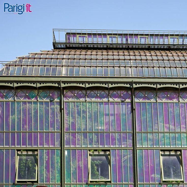 A Parigi si trova l'orto botanico più grande di Francia, il Jardin des Plantes. Questa è la serra messicana, il primo esempio francese di architettura in ferro e vetro.  [Photo credits: Christophe Mouton]