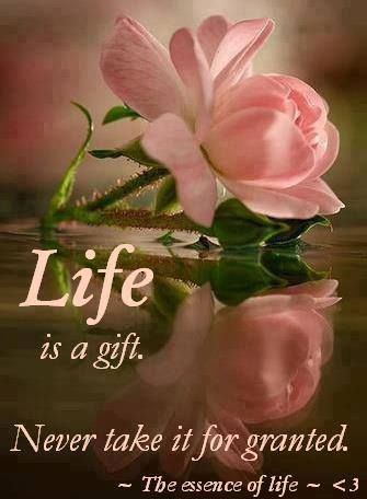 Life is a gift. never take it for granted. ~ The essence ...