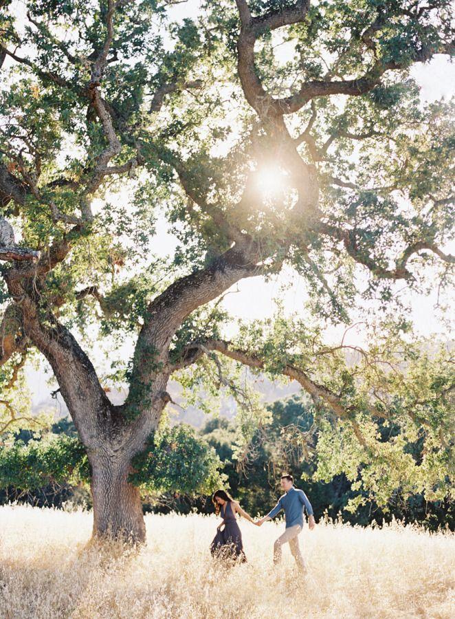 Stunning e-sesh under a California Oak: http://www.stylemepretty.com/california-weddings/2015/08/04/golden-hour-engagement-session-under-a-california-oak-tree/ | Photography: Clary Pfeiffer - http://claryphoto.com/