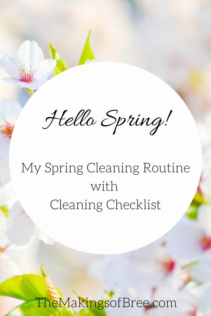 One of the first things that come to mind when I think of spring is spring cleaning. And with today being the first day of spring, I wanted to share my spring cleaning routine. A lot of people may cringe at the thought of cleaning, but I personally love to clean! It may seem weird, …