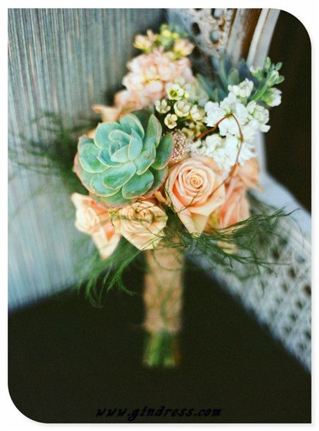 beautiful peach with a greenish tinted flower