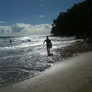 Morning surf noosa