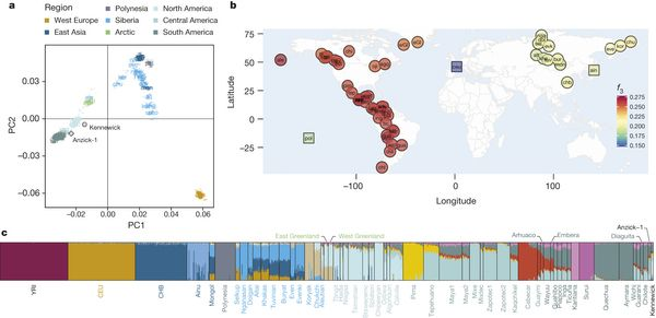 Kennewick man's ancestors identified. Genetic affinities between Kennewick Man and a panel of World-wide populations.