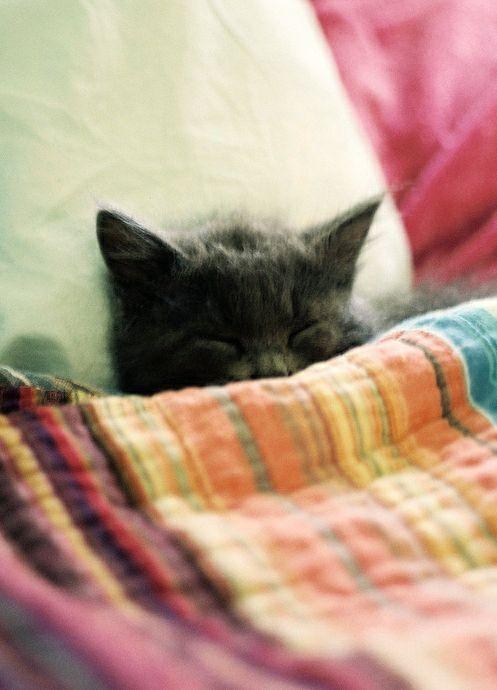 #sheetstreet memories home design bedtime sweetdreams linen decor sheets blankets snuggle