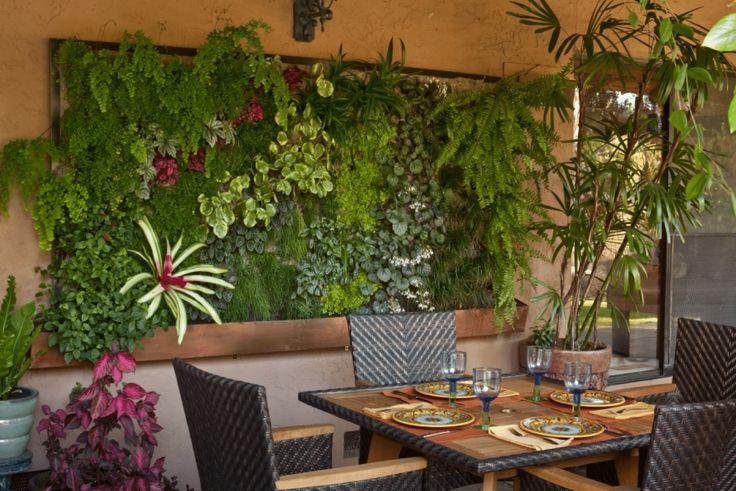 Вертикальное озеленение (113 фото): видео. Вертикальное озеленение в квартире, в офисе, в интерьере, сада, фасада дома. Настенная фитоконструкция.