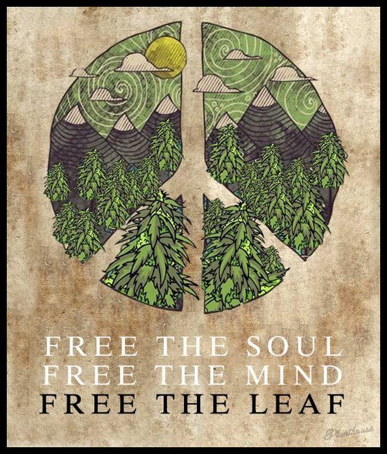Peace Pot Marijuana Art - CannabisTutorials.com