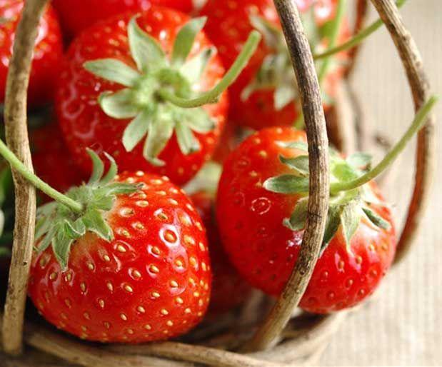 Sağlıklı Bir Cilt İçin Bir Avuç Çilekİnsan derisi, bireye bağlı olarak 15 gün-3 ay arasında değişiyor. Bu kadar hızlı değişen bir dokuyu, beslenme alışkanlıkları önemli ölçüde etkiliyor. Dengeli beslenme, cilt hücrelerini güçlü ve nemli tutuyor.    Yazının Devamı: Sağlıklı Bir Cilt İçin Bir Avuç Çilek | Bitkiblog.com  Follow us: @bitkiblog on Twitter | Bitkiblog on Facebook