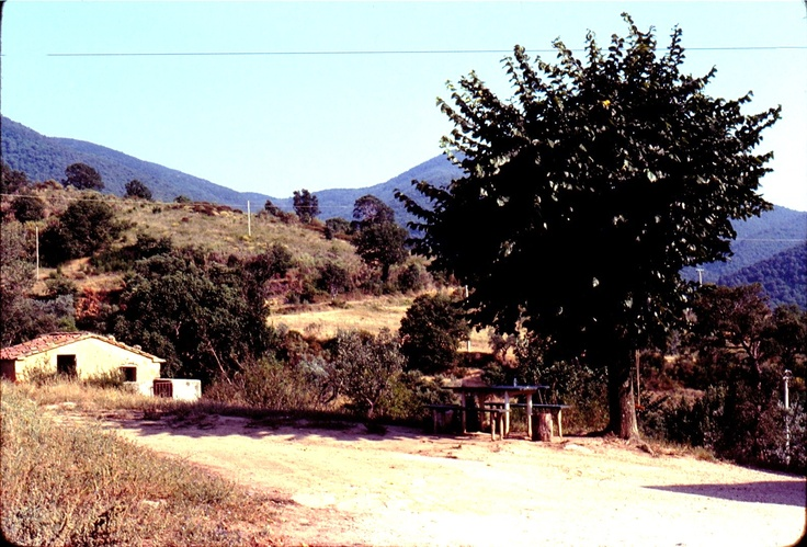 Homo Sodo: Scarlino. Maremma Toscana..Addio.