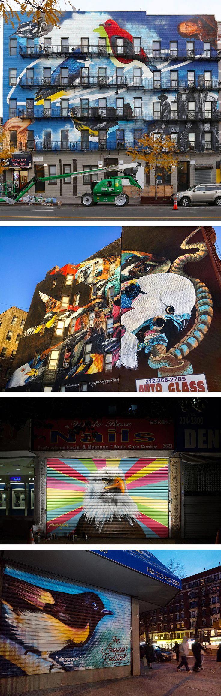 The Audubon Mural Project Attracts 314 Endangered Birds To