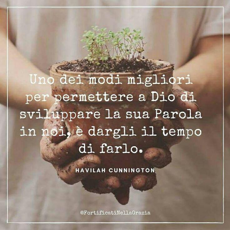 #havilahcunnington #citazioni #frasicristiane #motivazione #Gesù #incoraggiamento #fede #amore #crescita #vita #pensieri #devotional #dailydevotion #fortificatinellagrazia