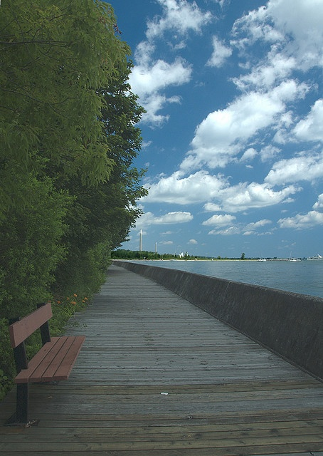 Toronto Island (Ward's Island) Boardwalk. Last kms of the Longboat 10k...watch your step on the bouncing boards!