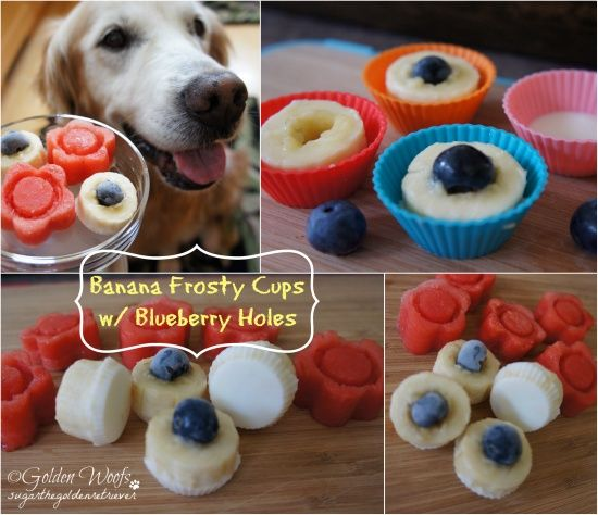 Summer Frosty Dog Treats