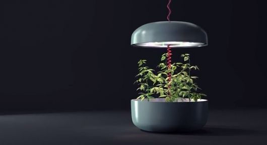 The Plantui Plantation measures 45 cm (17.7 in) in diameter with an adjustable height of 2...