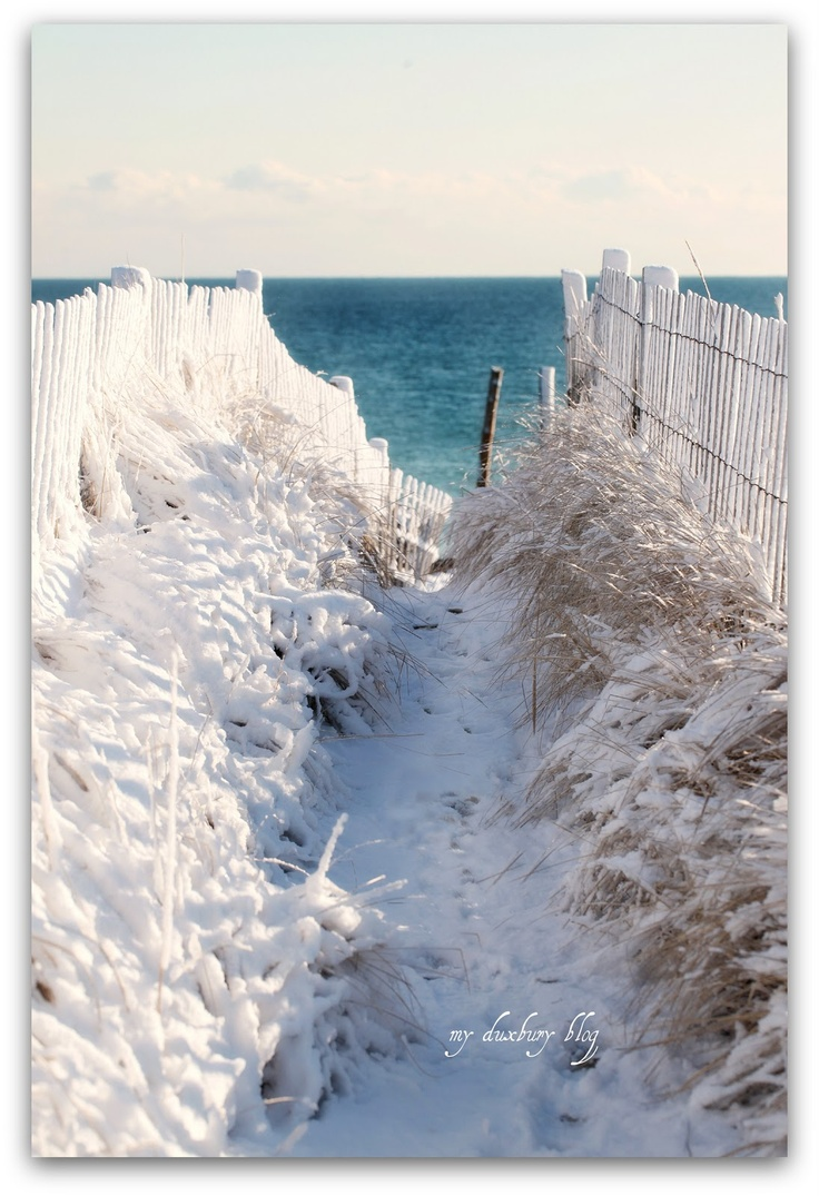 The beach is beautiful even in the winter. Always was weird to see snow on the beach when I was on the east coast. ;)