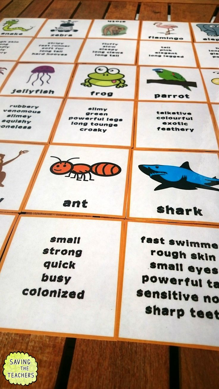 Adjectives Game - Who Am I? My children absolutely LOVED this game matching the adjectives with the correct animal! A fun way for them to practice their adjectives.