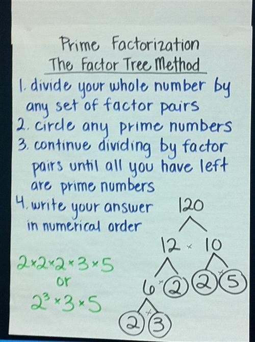 prime factorization anchor chart...factor tree method. KNew this in elementary school and now can't remember for college, handy
