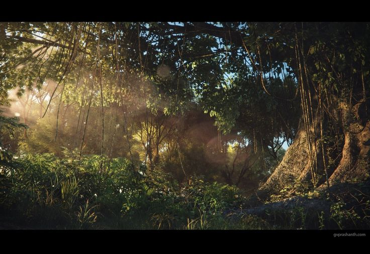 Evening Forest , GV Prashanth on ArtStation at https://www.artstation.com/artwork/b5xoa