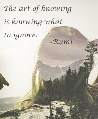 """""""The art of knowing is knowing what to ignore."""" Rumi"""