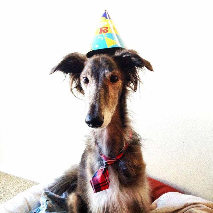 Stanley's 4th Birthday