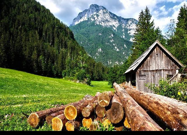 Construcción sostenible: Excelentes casas de madera: Las casas de madera son opciones de viviendas más ecológicas,… #General #News #avances