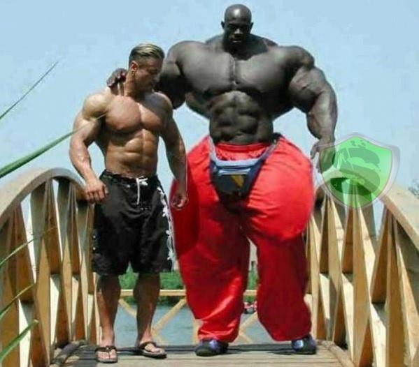 Hulk versão: africana - Hulk African version