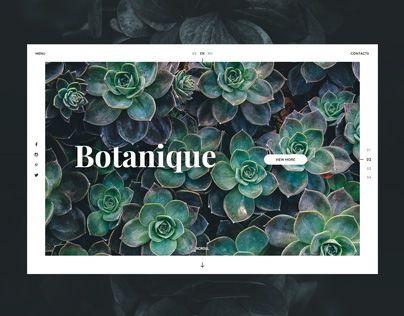 次の @Behance プロジェクトを見る : 「Botanique」 https://www.behance.net/gallery/40503067/Botanique